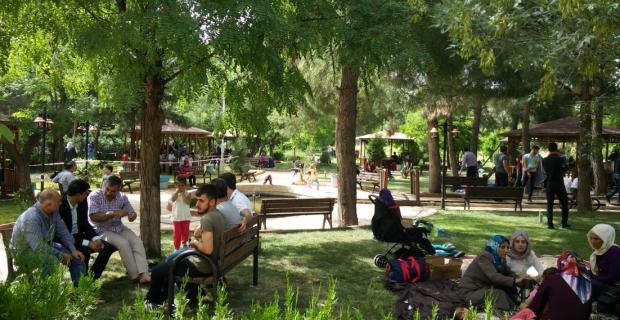 Eğitim Bir-Sen Üniversite Şubesi Piknikte Bir Araya Geldi